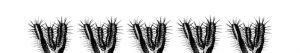 Cactus format 400 x 70 Kitchen Splashback