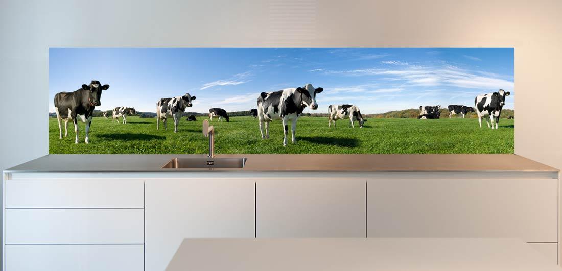 Kitchen back splash cows