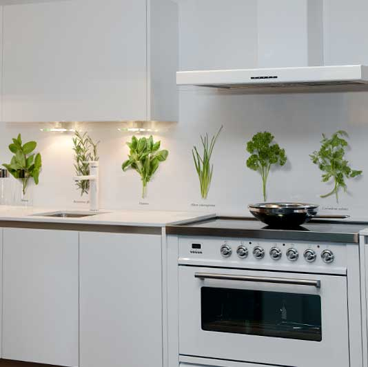 kitchen-splash-back-herbs
