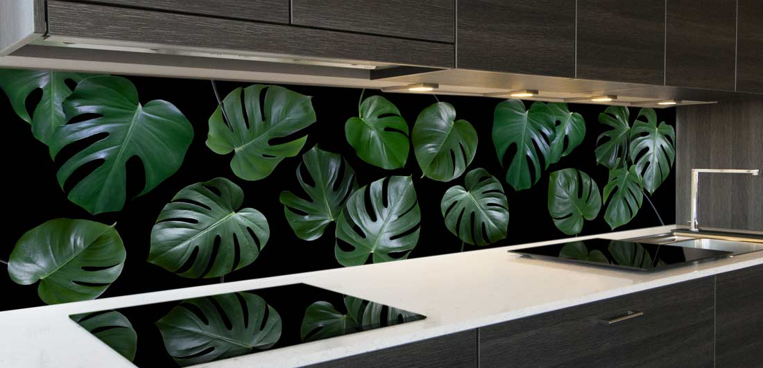 keuken spatwand Monstera