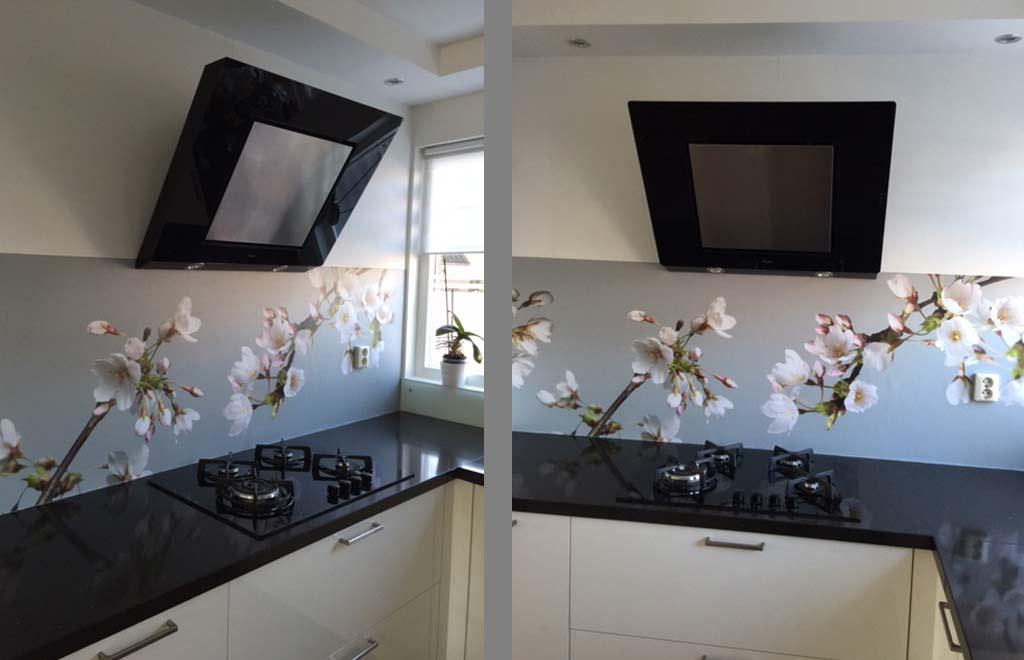 Keuken spatwand Japanse Kers