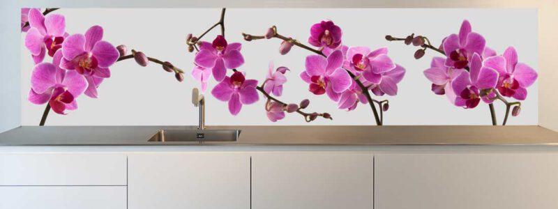 Keuken achterwand Purple Delight